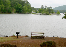 a picnic table and grille along the shore of Lake Allatoona