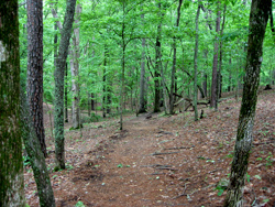 Redtop Mountain State Park Hiking Trails